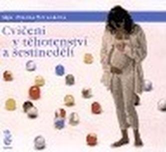 Cvičení v těhotenství a šestinedělí - Blanka Beránková