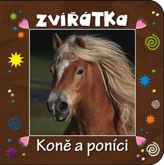 Zvířátka - Koně a poníci - neuveden