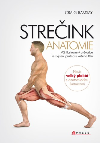 Strečink - anatomie - Craig Ramsay