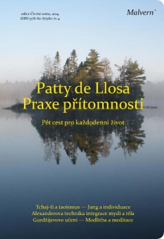 Praxe přítomnosti - Patty de Llosa