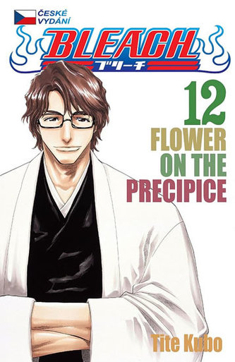 Bleach 12: Flower on the Precipice - Tite Kubo