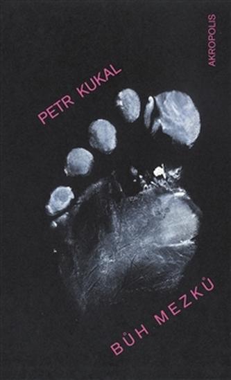 Bůh mezků - Petr Kukal