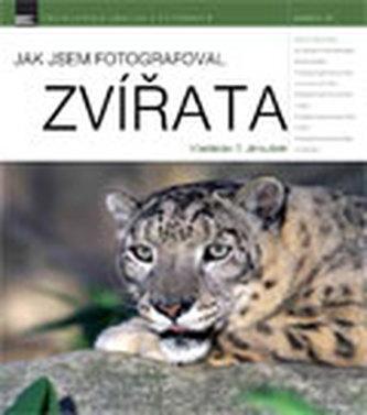 Jak jsem fotografoval zvířata