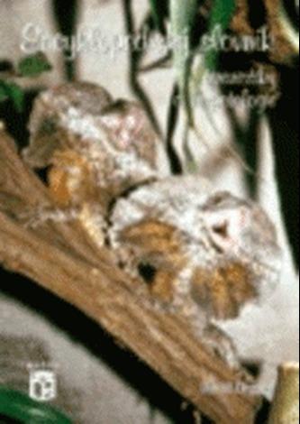 Encyklopedický slovník teraristiky a herpetologie - Hegner, David