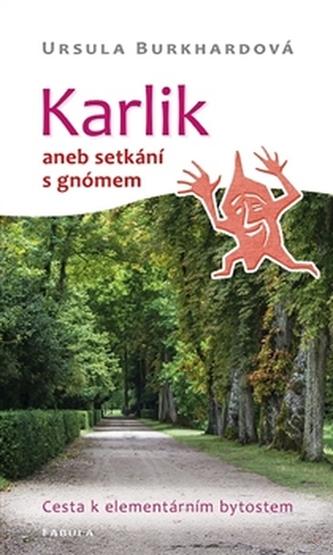 Karlik aneb setkání s gnómem - Ursula Burkhardová