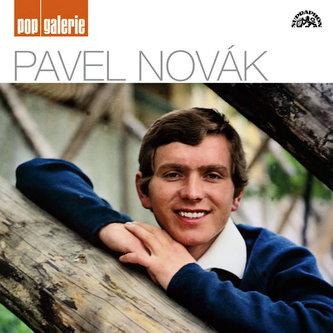 Pavel Novák pop galerie CD - Novák Pavel