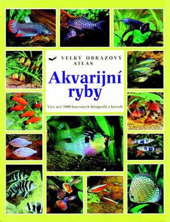 Akvarijní ryby - Wally Kahl