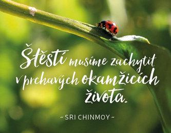 Magnet na lednici 'Štěstí musíme zachytit...' - Sri Chinmoy