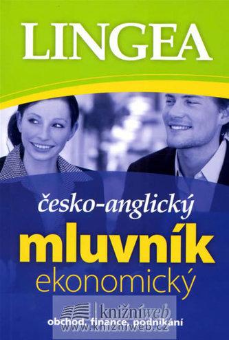 Česko - anglický mluvník ekonomikcý - Kolektiv autorů