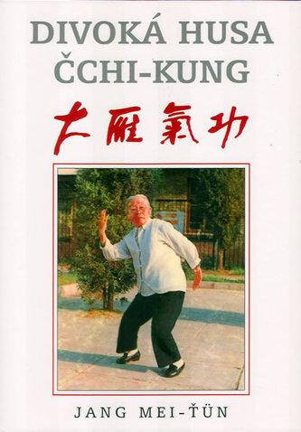 Divoká husa čchi-kung - Jang Mei-ťun