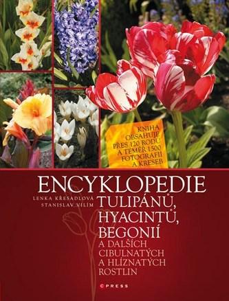 Encyklopedie tulipánů, hyacintů, begonií